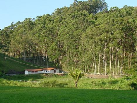 Estupenda Finca en Brasil.
