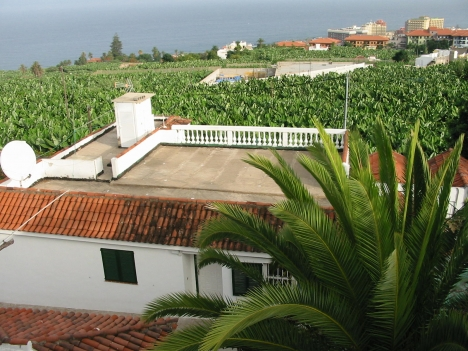 Large premise + home + 6 apts. in Puerto.