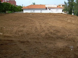 Tenerife, Plot in La Orotava