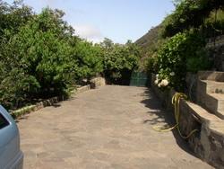 Estupenda finca en zona tranquila con árboles frutales y estanque de agua