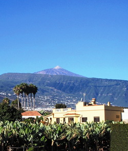 Tenerife, Casa/Chalet en La Orotava, Amorosamente restaurada grande finca/casa (500sqm superficie habitale)