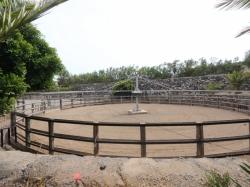 San Isidro: Modern Equestrian Finca with 8 Apartments and Moringa Plantation