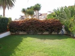 Teneriffa, Studio in Puerto de la Cruz, La Paz; Geräumiges Studio mit Terrasse und eigenem Garten!