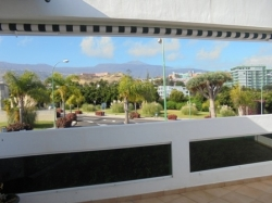 Fantastic sunny flat with terrace.