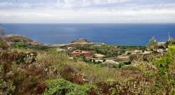Tenerife, Plot in Icod de los Vinos