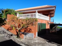 Tenerife, Finca in Tacoronte, Estate vineyards in full operation with house!