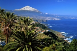 Tenerife, Plot in Tacoronte, Attention! Several building plots with sea view! Various sizes and prices!