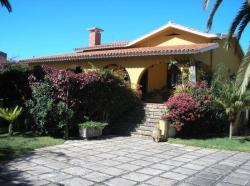 Teneriffa, Haus/Chalet in Puerto de la Cruz, Sehr Grosses Haus mit 1100m2 Grundstuck Im Stadtzentrum!