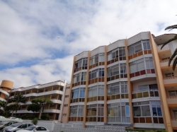 Tenerife, Estudio en Puerto de la Cruz