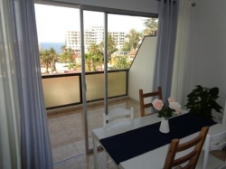 Tenerife, Apartment in Puerto de la Cruz, Apartment very well maintained, spacious, bright, new bathroom, open kitchen, pool
