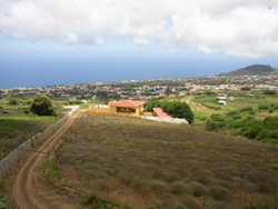 Tenerife, Finca in , Huge Farm with 8.000 m2 of vineyard.