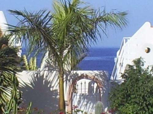 Playa San Juan - Apartamento