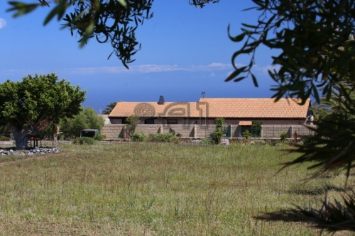 Teneriffa, Existenz in Granadilla de Abona