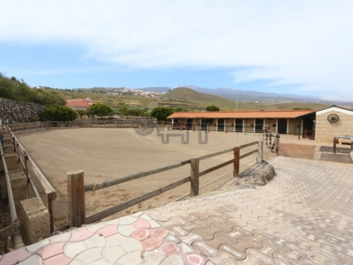 San Isidro: Modern Equestrian Finca with 8 Apartments and Moringa Plantation